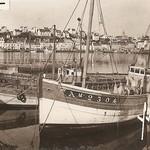 Goéland 35