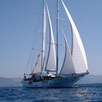 prestigeboat