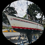 Skipper44